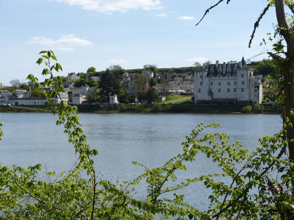 Montsoreau vue rive droite