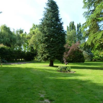 Gîte Les Clématites Chouzé-sur-Loire : le parc vu du gîte
